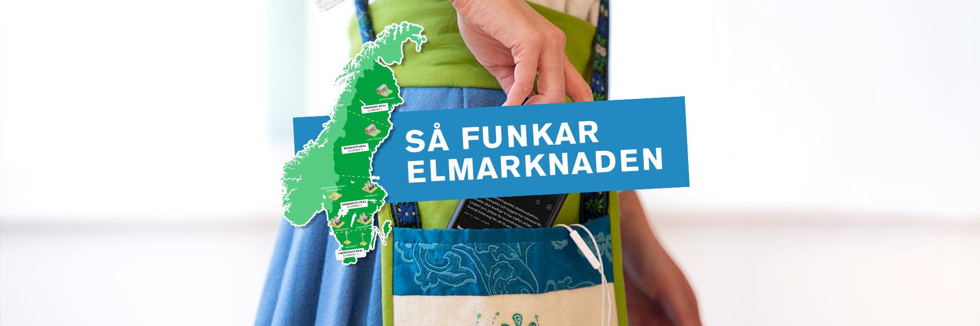 Så funkar Sveriges elområden
